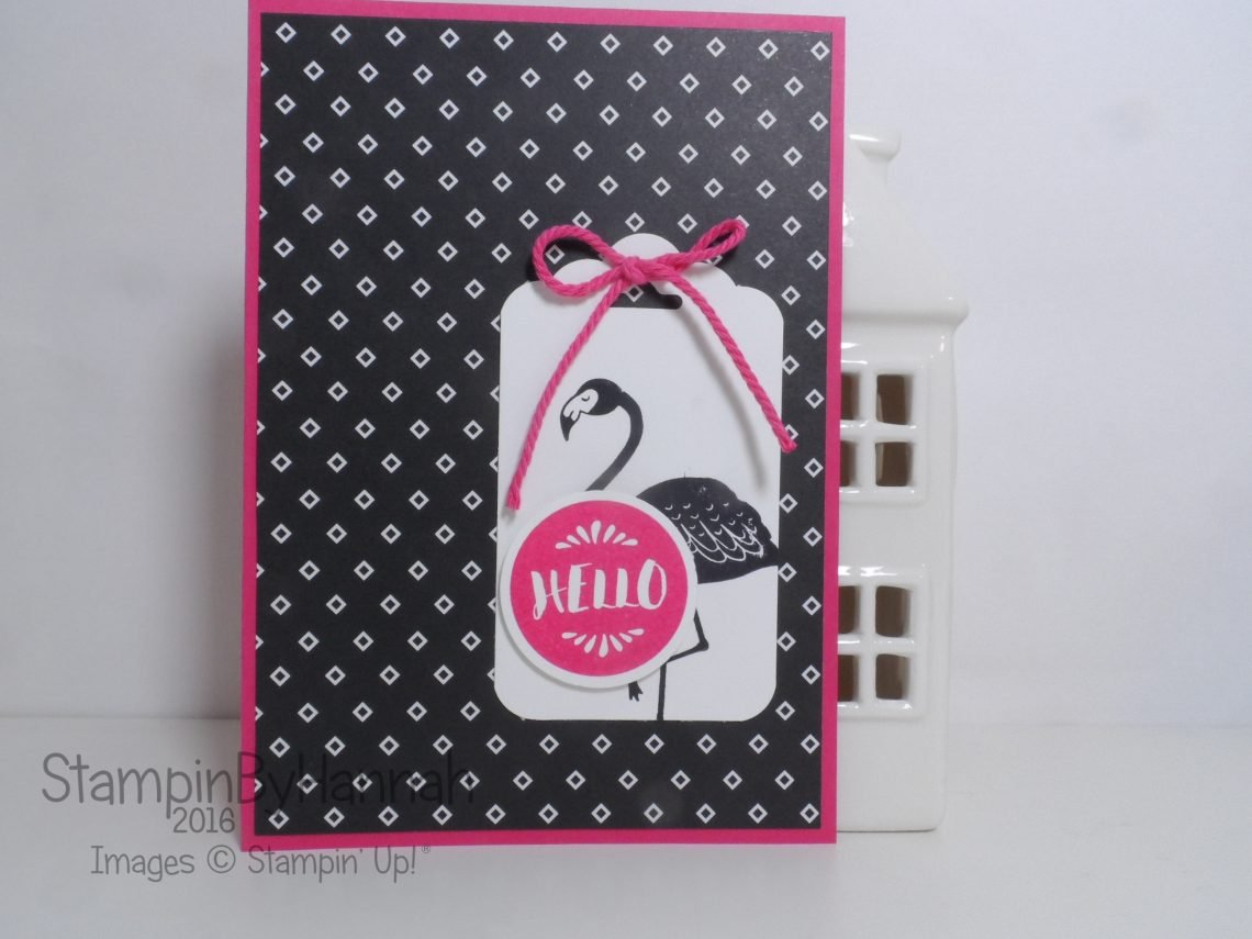 Hello Team Member Card using Pop of Paradise from Stampin' Up! UK