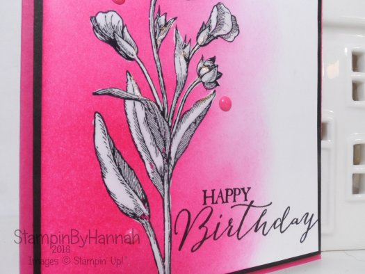 Happy Birthday Butterfly Basics card Stampin' Up! UK