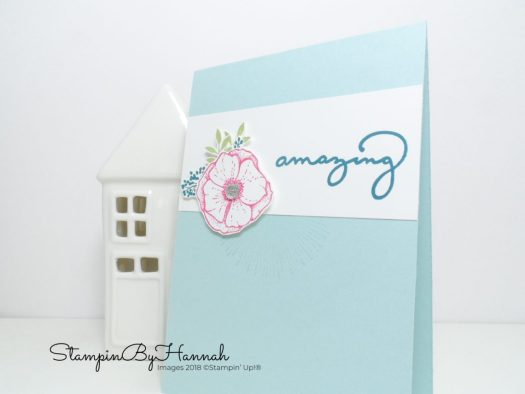 Amazing You Stampin' Up! Catalogue Case Card