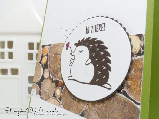 Inspire.Create.Challenges 011 sketch challenge featuring Hedgehugs from Stampin' Up!