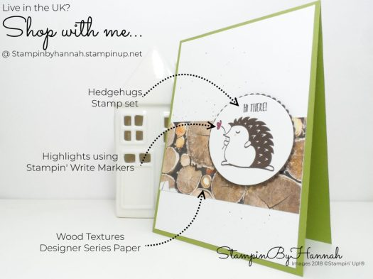 How to make a cute card using Hedgehugs from Stampin' Up!