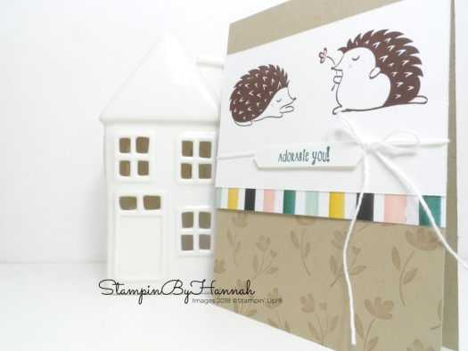 Adorable Hedgehugs Card using Stampin' Up! products