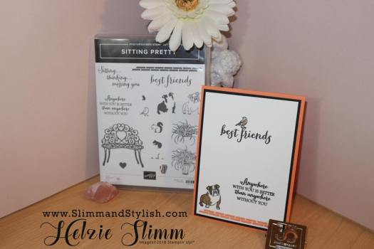 Clean and simple bulldog card by Slimm and Stylish using Stampin' Up! products