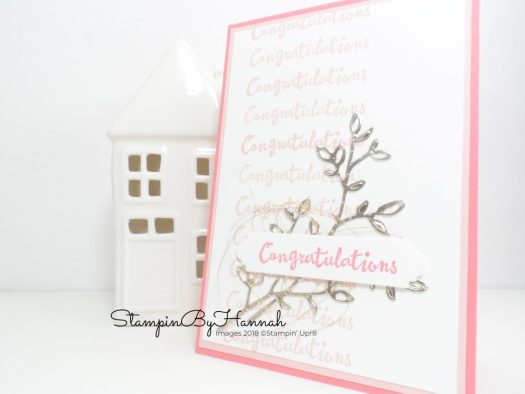 Pretty Congratulations Card using Repeat Stamping and the Stamparatus from Stampin' Up!