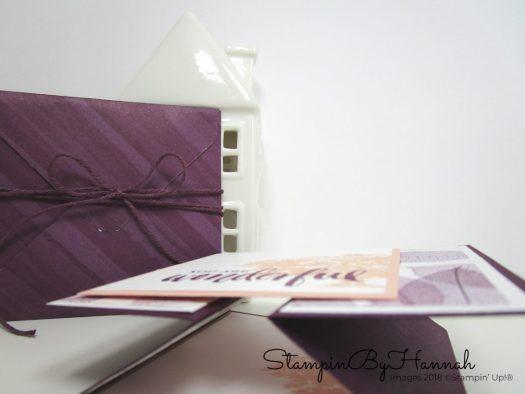 Fun Gate Fold card and custom envelope using Designer Series Paper from Stampin' Up!