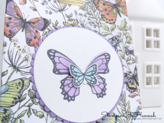 Pretty butterfly paper bag using Butterfly Gala from Stampin' Up!