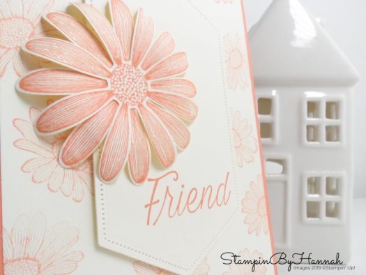 Simple Friend card using Daisy Lane from Stampin' Up! with StampinByHannah