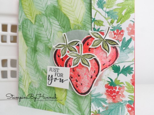 Quick Designer Series Paper card using Berry Blessings from Stampin' Up! with StampinByHannah