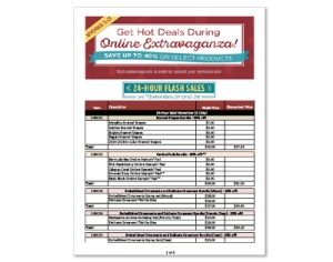 online-extravaganza-flyer