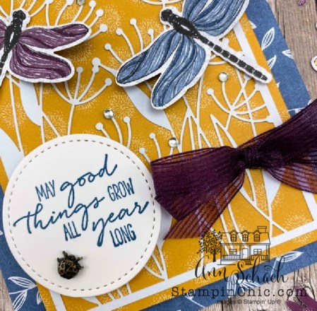dragonfly garden all occasion card