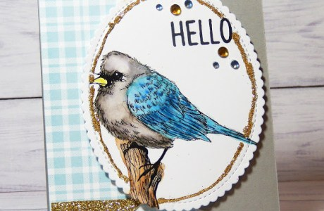 Project: Blue Bird Card