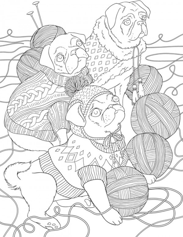 Download: Pugs in Sweaters Coloring Page