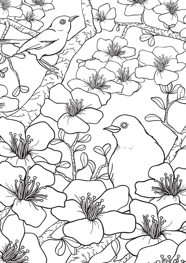Freebie: Spring Birds and Flowers Coloring Page