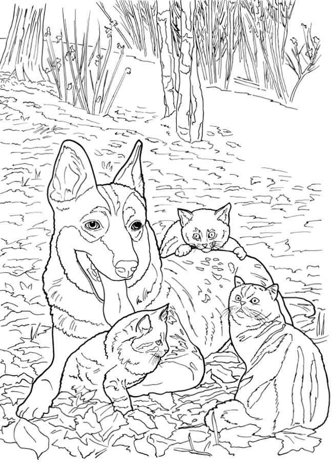 5 Cats And Dogs Coloring Pages Stamping