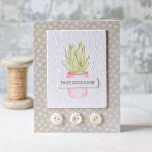 Clean and Simple Succulent Cards