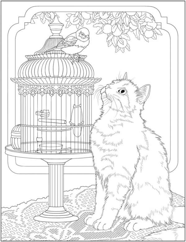 Cat Coloring Pages for Adults Pic Best to Print This Free Coloring ... | 783x600