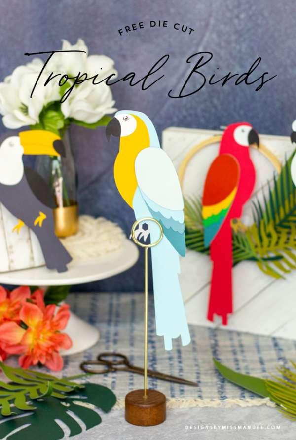 Tropical Birds Die Cuts