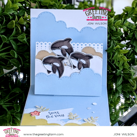 Orca Whales Pop Up Card