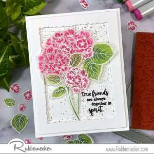 Stamping and Coloring on Vellum with Copics