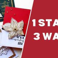 3 Cards with 1 Poinsettia Stamp