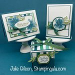 Greeting Cards and Explosion Box created with the Gorgeous Posies Stamp Set by Stampin