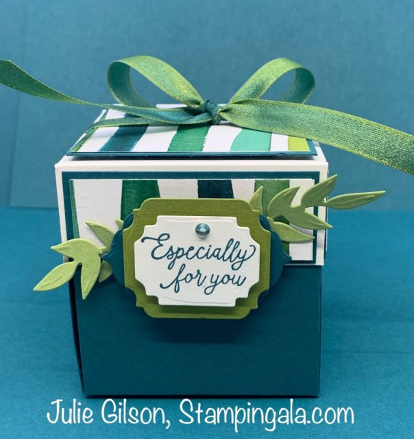 Greeting Cards and Explosion Box created with the Gorgeous Posies Stamp Set by Stampin' Up. #Stampin' Gala, #Julie Gilson, #Birthday Card, #Box