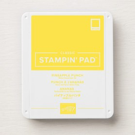 Ink Pad - Pineapple Punch - 10.25 - 147141G