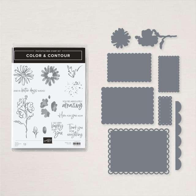 Color & Contour Bundle Image