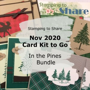 Stamping to Share November 2020 Card Kit to Go using In the Pines Bundle making Masculine Cards