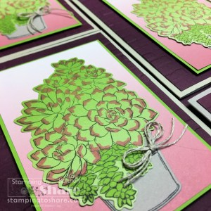 Simply Succulents with Oh, So Ombre Paper