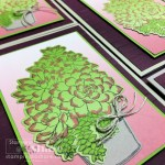 Simply Succulents Bundle with Oh, So Ombre SAB paper