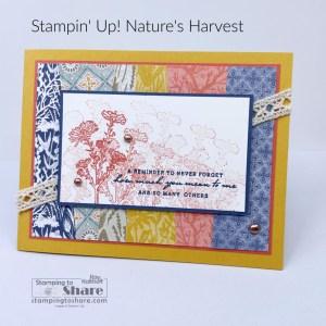Nature's Harvest Bundle with Scraps Background