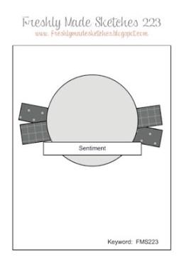 FMS 223 sketch layout