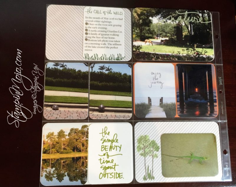 Stampin Up, Project Life, Cature the Everyday - Michelle Gleeson, Scrapbooking