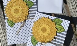Stampin Up Celebrate Sunflowers Bundle Anytime card ideas Michelle Gleeson Stampinup SU