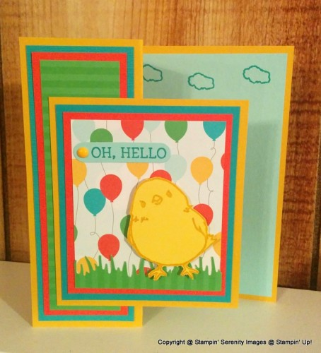 Pals Paper Crafting Card Ideas Sky is the Limit Mary Fish Stampin Pretty StampinUp.jpg