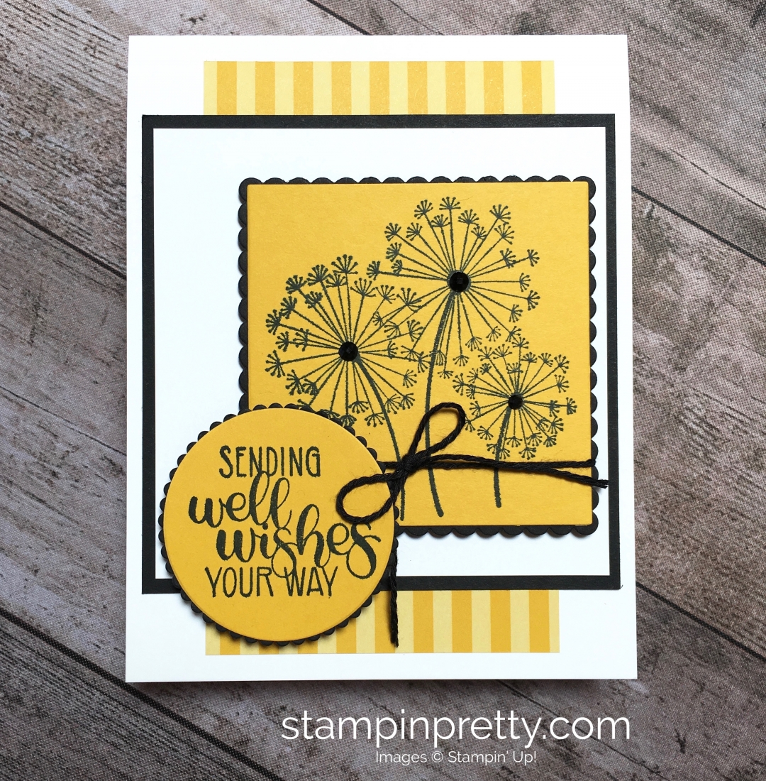 Create a simple get well card using Stampin Up Dandelion Wishes - Mary Fish StampinUp Idea