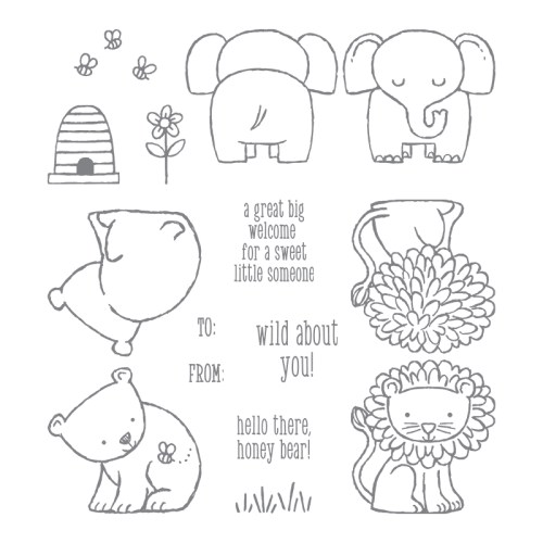 A Little Wild Stamp Set 144344 - Images © Stampin' Up!