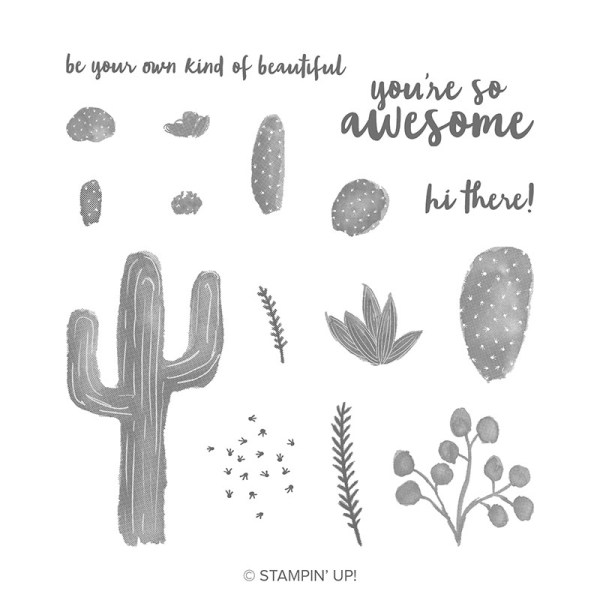 Stampin' UP! Flowering Desert Stamp Set