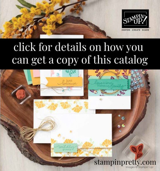 Annual Catalog Cover 2020-2021 Click to Order