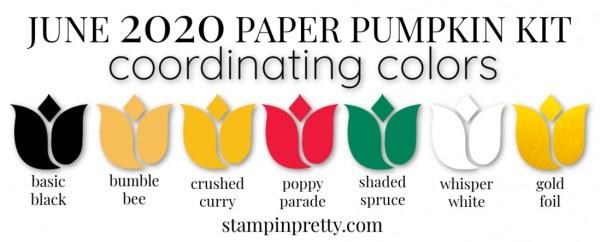 Coordinating Colors - June 2020 Paper Pumpkin