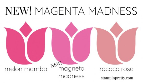 New In Color Comparison - Magenta Madness