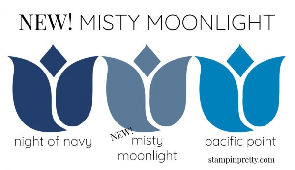 New In Color Comparison - Misty Moonlight