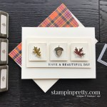 Create this card using the Beautiful Autumn Bundle from Stampin