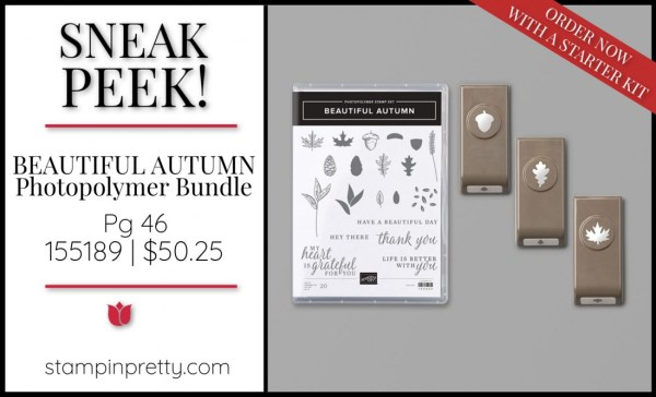 Sneak Peek Beautiful Autumn Bundle Stampin' Up! 155189 $50.25