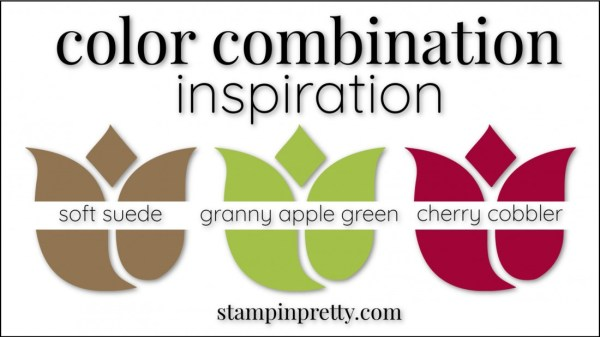 Color Combinations Soft Suede, Granny Apple Green, Cherry Cobbler