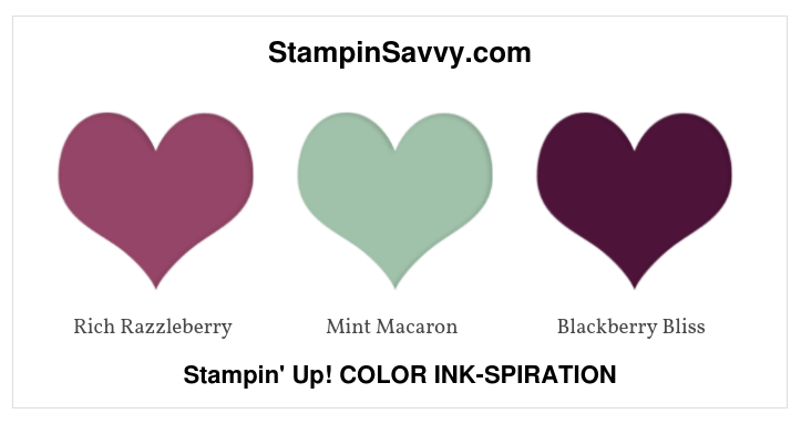 stampin up color inspiration, color ideas, rich razzleberry, mint macaron, blackberry bliss, stampinup, stampin savvy, tammy beard