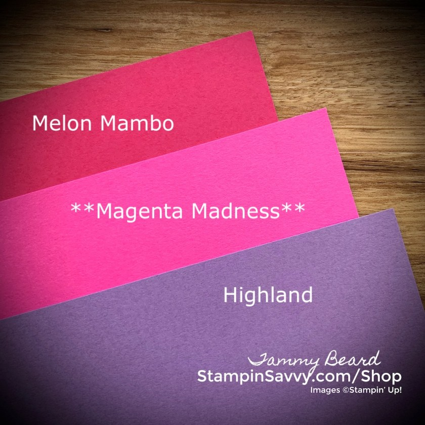 2020-2022-In-Colors-MAGENTA-MADNESS-COLOR-COMPARISON-TAMMY-BEARD-STAMPIN-SAVVY