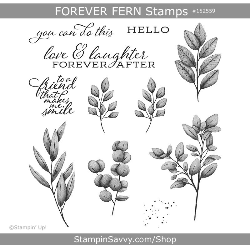 forever-fern-152559-stampin-up-tammy-beard-stampin-savvy-1