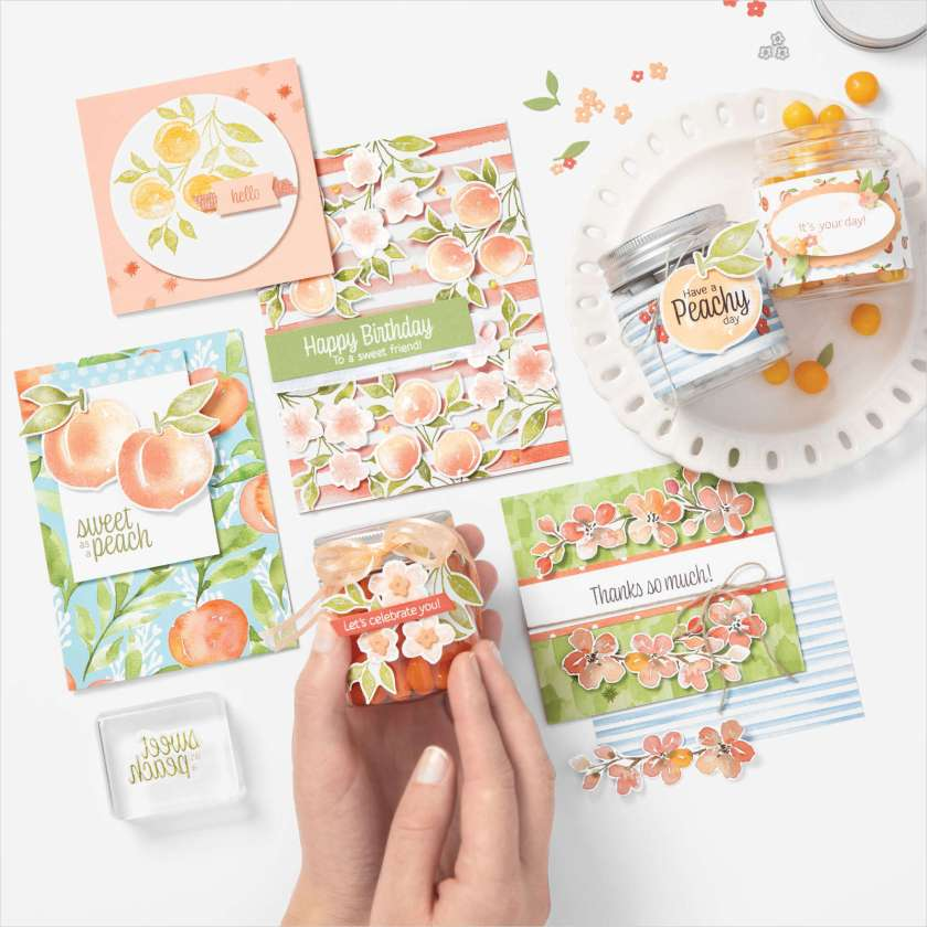 YOURE-A-PEACH-SUITE-PROJECT-IDEAS-TAMMY-BEARD-STAMPIN-SAVVY